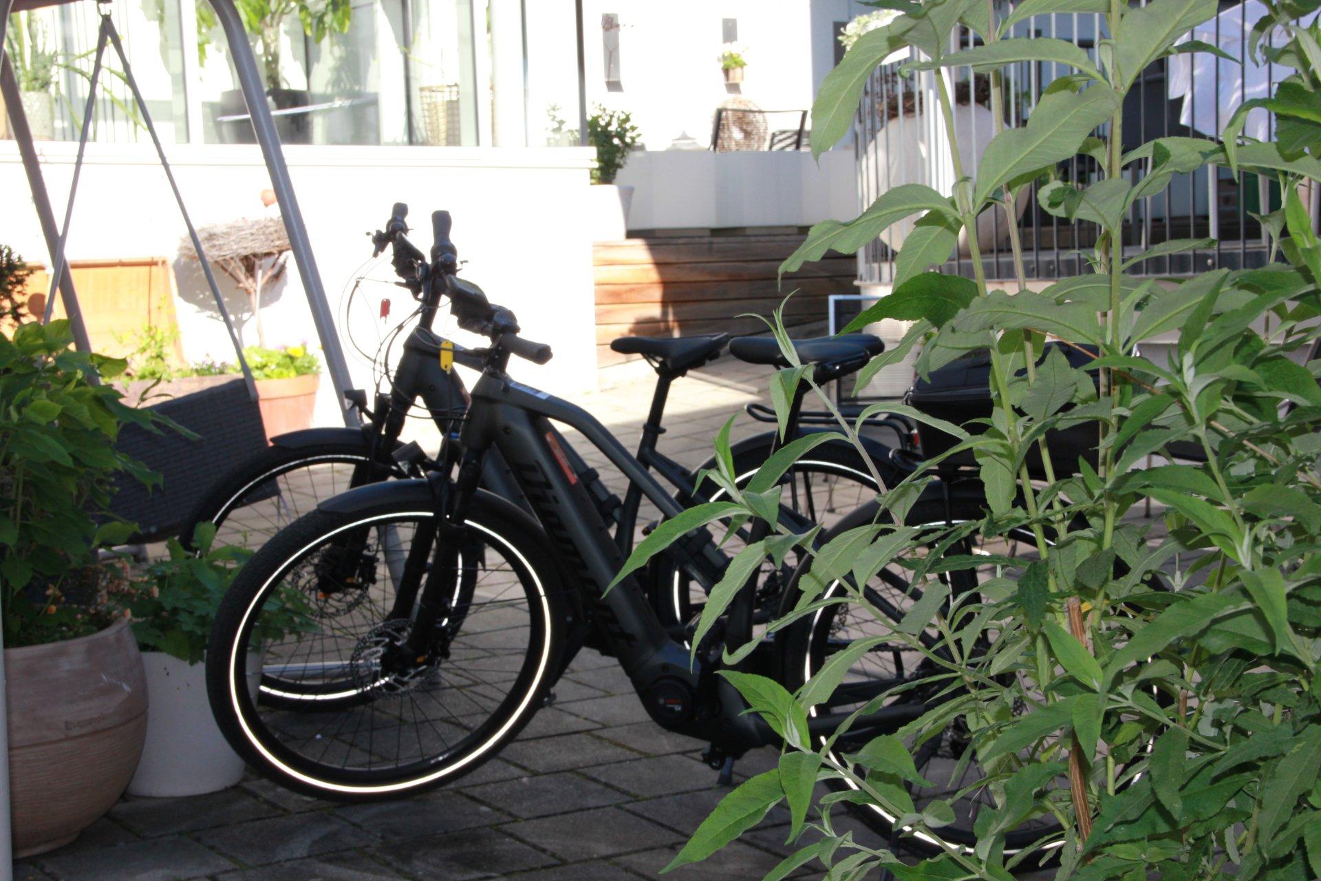 Zur Traube E-Bikes